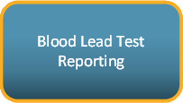 Blood Lead Test Reporting